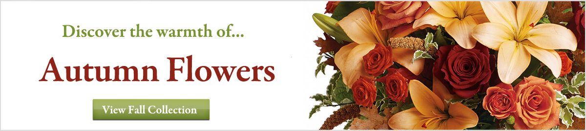 View our Autumn and Fall collection of flowers and gifts delivered next-door or nationwide