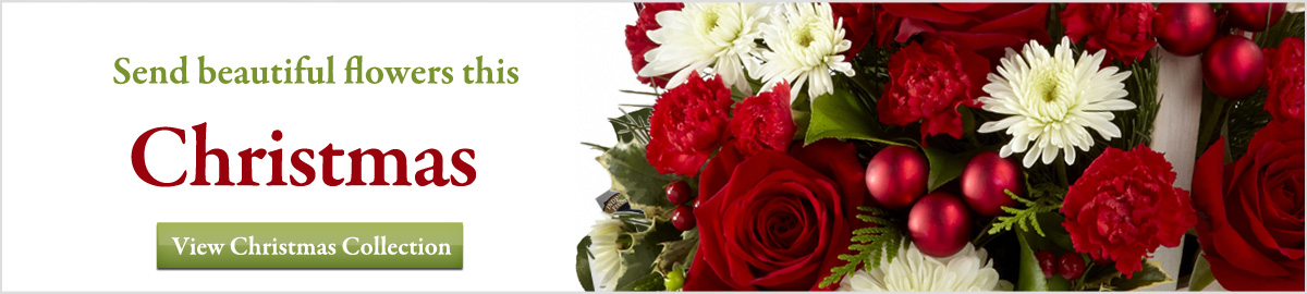 View our Christmas collection of flowers and gifts delivered next-door or nationwide