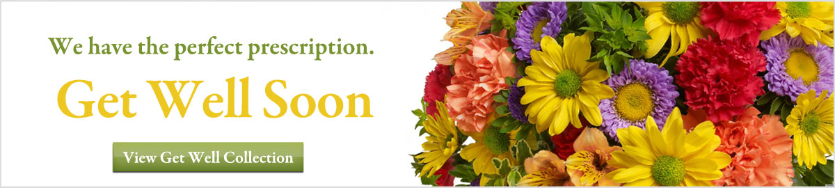 Get Well Flowers available for delivery next-door or nationwide