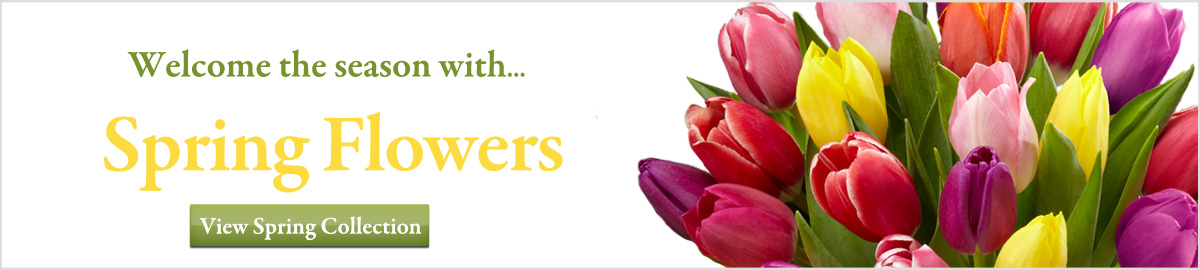 Spring flowers and gifts delivered next-door or nationwide