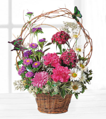 Touch of Butterflies Basket
