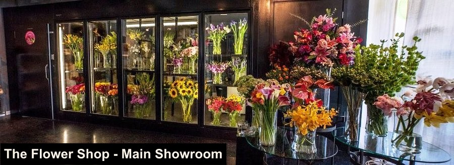The Flower Shop Showroom